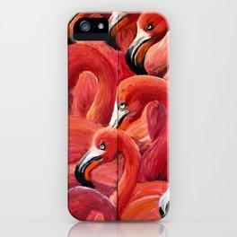 Flamingo Gaggle iPhone Case