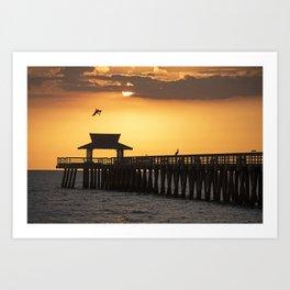 A Pelican dive-bomb at sunset over the Naples Pier Naples Florida Art Print