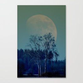 Concept landscape : Moon behind the tree Canvas Print
