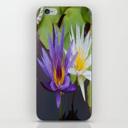 Loving Lotuses iPhone Skin