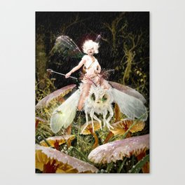 Fairies Wear Boots Canvas Print