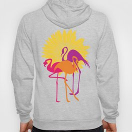 Colorful Flamingos Hoody