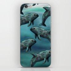 Vaquita  iPhone & iPod Skin