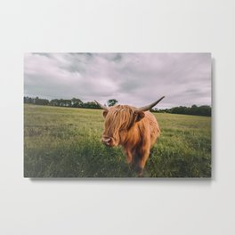 Epic Highland Cow Metal Print