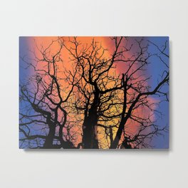 A Fire In The Sky Metal Print