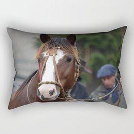 Criollo Horse Rectangular Pillow