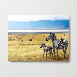 This is Africa Metal Print