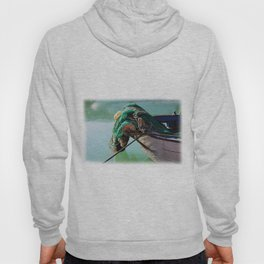 Fishing boat Hoody