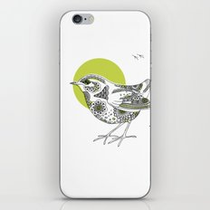 Bush Wren Xenicus Longipes iPhone & iPod Skin