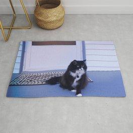 Cat house Rug