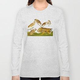 Burrowing Owl Illustration Long Sleeve T-shirt