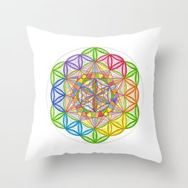 Hidden Jewel - The Rainbow Tribe Collection Throw Pillow
