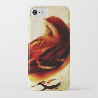 sparrow iPhone & iPod Cases featuring Sparrow by Christine Belanger