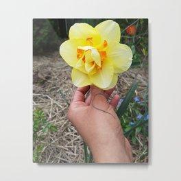 A Flower 4 Uq Metal Print
