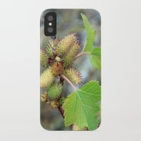 plant iPhone & iPod Cases featuring Plant by BACK to THE ROOTS