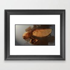 Maple Fey  Framed Art Print