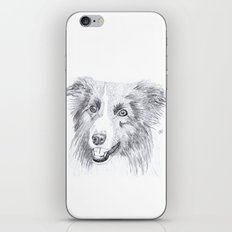 Border Collie Sketch iPhone & iPod Skin
