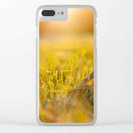 fallen leaves of a maple Clear iPhone Case