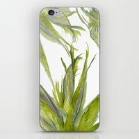 palms iPhone & iPod Skins featuring Palms by K.K. Designs
