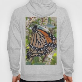 Love in the Air - Monarch Style Hoody