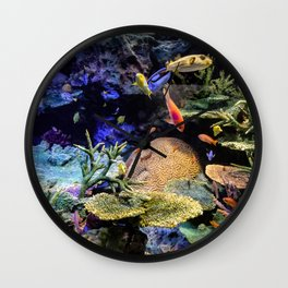 Brain Coral and Bright Colours Wall Clock