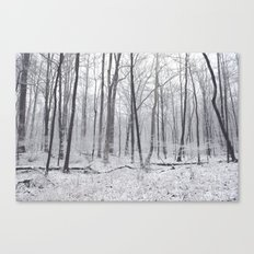 Winter's Woods Canvas Print