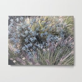 Earth Day in the Fields of San Gabriel Mountains Metal Print