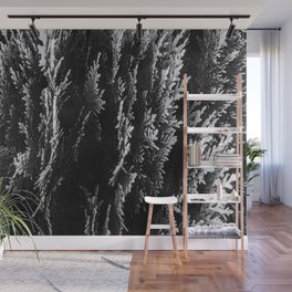 closeup leaf texture abstract background in black and white Wall Mural