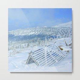 Winter day 20 Metal Print