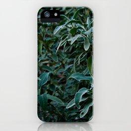 Dark garden iPhone Case