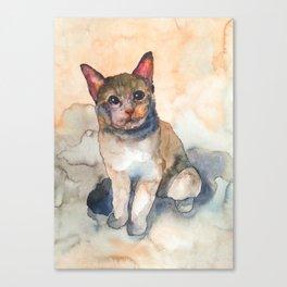 CAT #7 Canvas Print