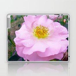 Funky Rose baby pink & yellow Laptop & iPad Skin