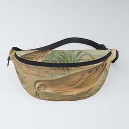 Striped Pipit Yellow tufted Pipit Fanny Pack