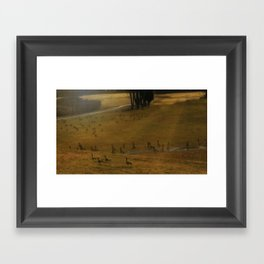 Migration - Nature Framed Art Print