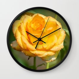 Beautiful Gold Medal Rose Wall Clock