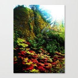 Moye utro Canvas Print