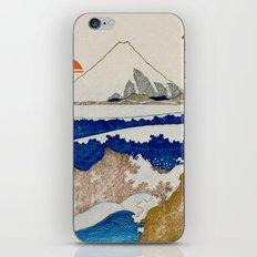 The Coast Searching iPhone & iPod Skin