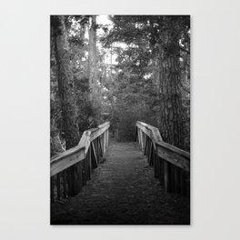 Burn a Bridge Canvas Print