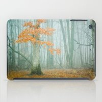autumn iPad Cases featuring Autumn Woods by Olivia Joy StClaire