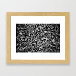 Fall Monochrome Framed Art Print