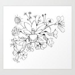Native Florida Flowers Art Print