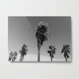 tropical palm tree in the wind | photography print from France, EuropeArt Print Metal Print