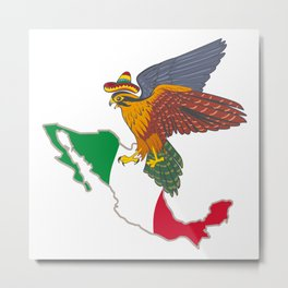 Welcome to Mexico Metal Print