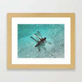 D-Fly Grunge Framed Art Print