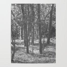Tarkov Woods Poster