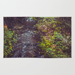 Stream at Little Pond Rug