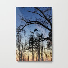 Blue Orange Pink Metal Print