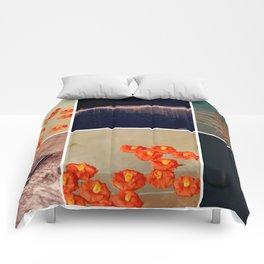 3046 Comforters