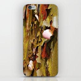 Rusty Stuff (~ Colours of Transience ~ ) II iPhone Skin