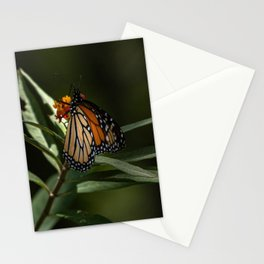 Midday Mid-May Stationery Cards